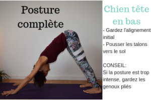 yogitouch-johanna-georges-yoga-chien-tete-bas-3
