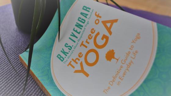 L'arbre du yoga de B.K.S Iyengar